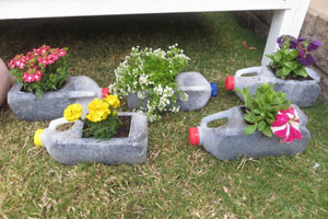 Milk Container Flower Pots
